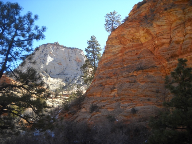 Zion near the East Entrance