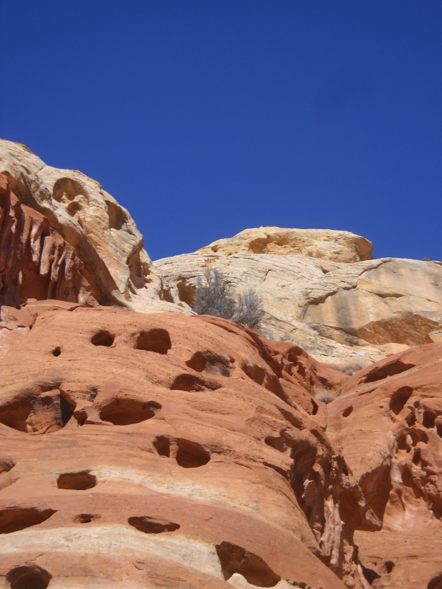 Capitol Reef National Park, March 6, 2013