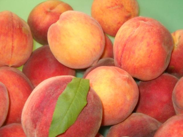 peaches #1