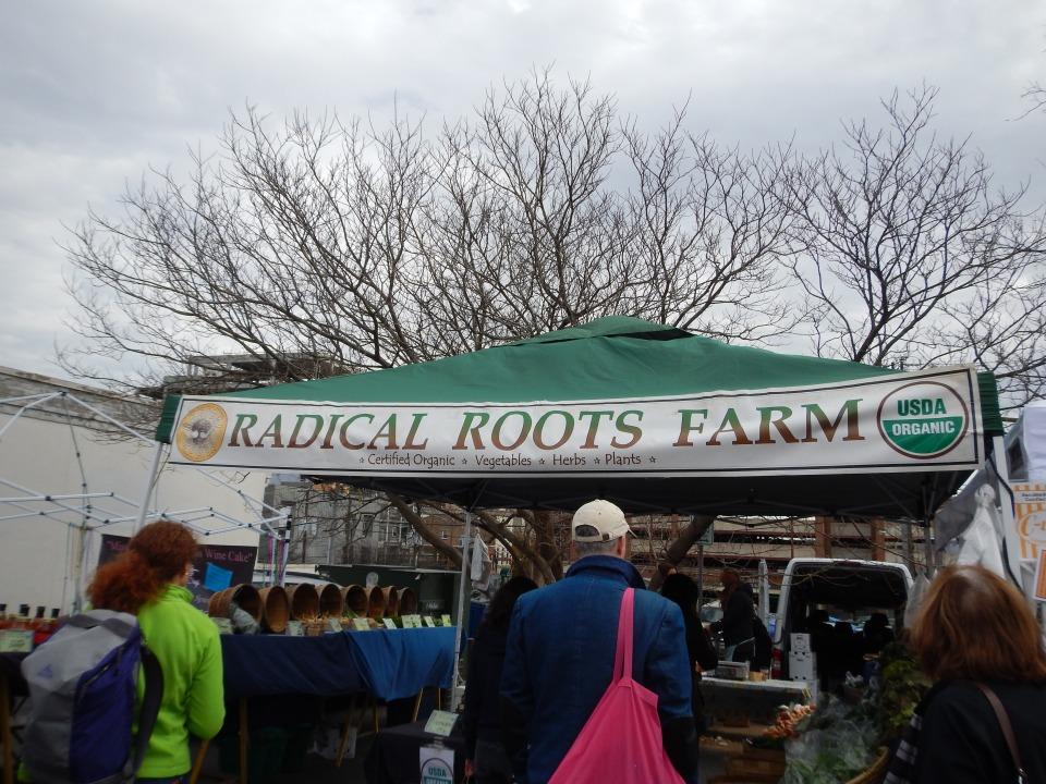 City Market #5
