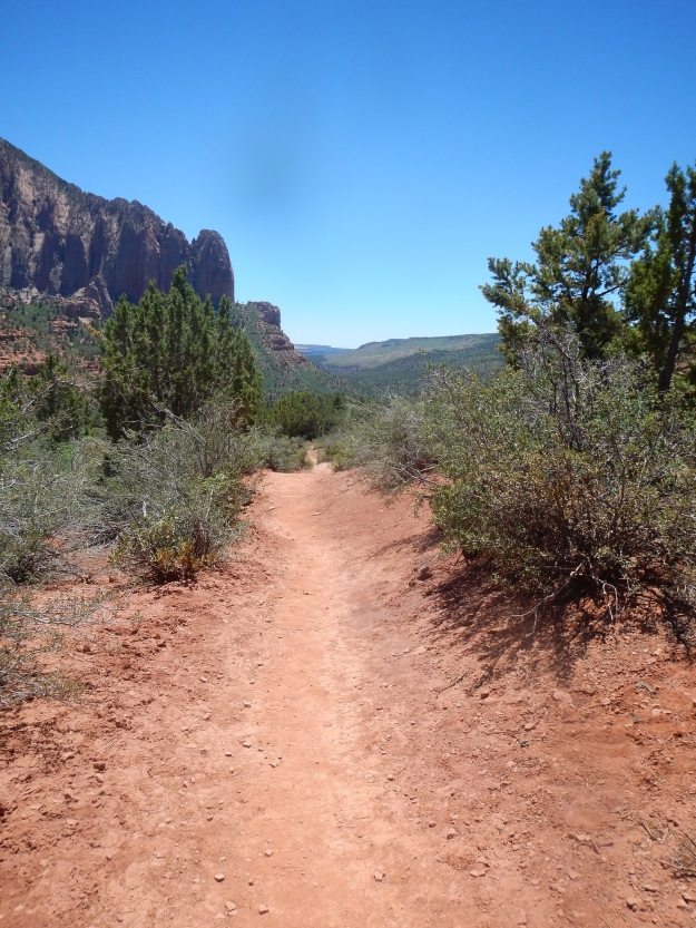 LaVerkin Creek Trail, Zion National Park, UT