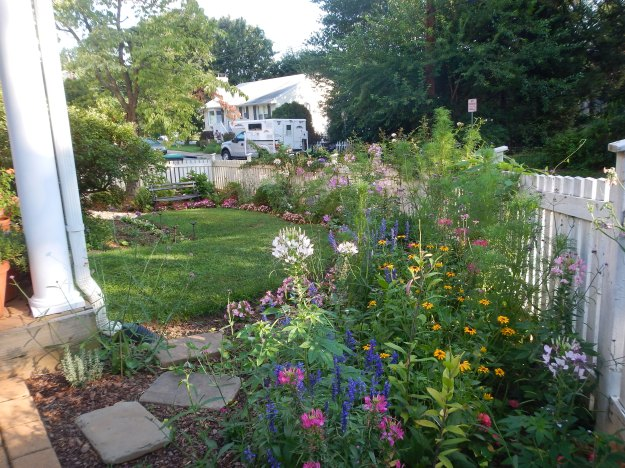 July: the garden and the camper