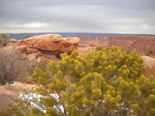 Needles Overlook, Canyons