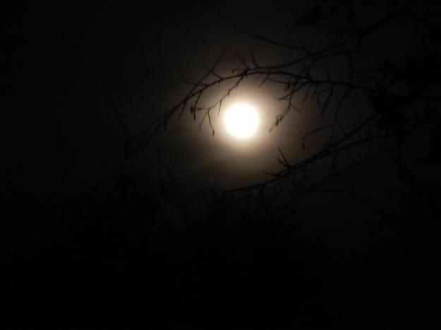Moonrise, Ft. Davis State Park