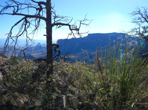 View fromLost Mine Trail, Big Bend N.P.