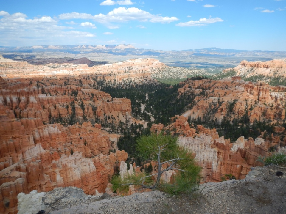 Bryce Canyon looking westward