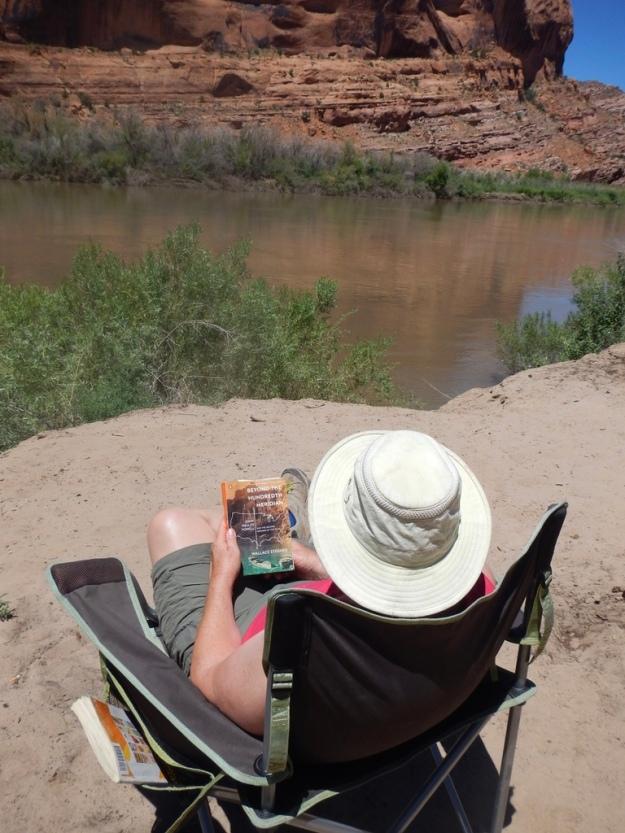 Colorado River brown, Kings Bottom Campground (near Moab, Utah)